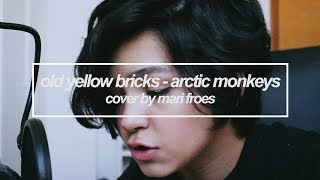 old yellow bricks - arctic monkeys || cover by mari froes