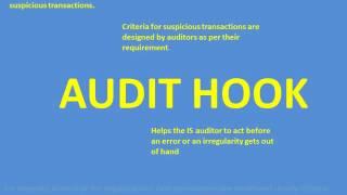 Online Auditing Techniques