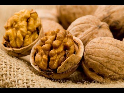 Грецкий орех. Польза и вред. Полезные свойства. Калорийность