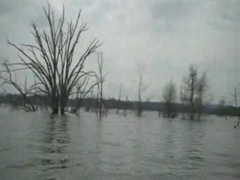 Fishing cedar creek frank crabtree jr kentucky ky youtube for Cedar creek lake fishing