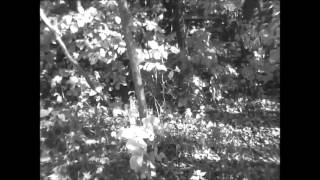 Neige Éternelle - Comme Une Charogne (video)