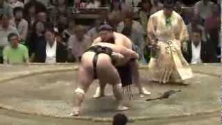 平成25年秋場所12日目 粘る粘る sumo 大相撲.