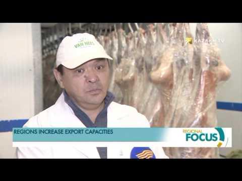 Kazakhstan's regions enhance export potential