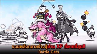 รวมพลังกลายร่างสู้ด่าน XP ที่ยากที่สุด Battle Cats