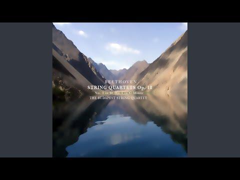 String Quartet No. 3 In D Major, Op. 18: IV.