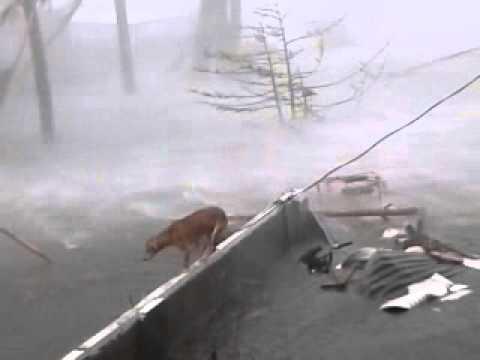 Typhoon Yolanda: Sumapig's Residence, Cogon, San Jose, Tacloban City