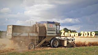 Żniwa 2019 ☆ Fortschritt E-514 [Engine Sound]