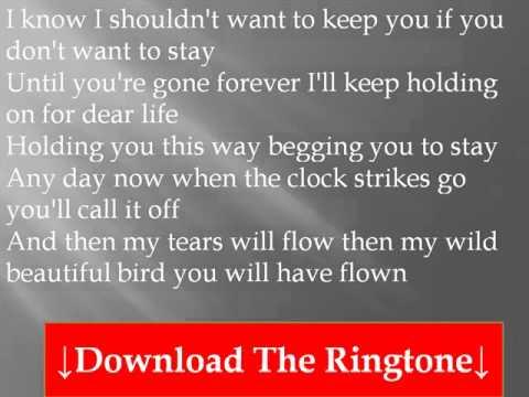 RONNIE MILSAP - Any Day Now Lyrics