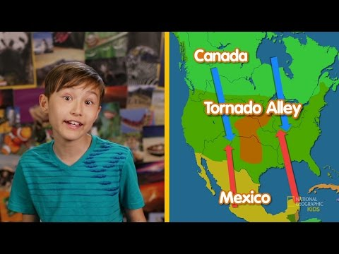 Talk About Tornadoes | Nat Geo Kids Weather Playlist