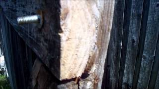 The Weakest Part Of A Wood Fence Gate - The Fix
