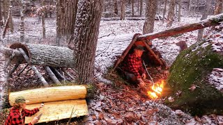 WINTER BUSHCRAFT BUILD NATURAL PRIMITIVE BARK ROOF SHELTER ALONE Campfire Cooking, Wool Blanket Snow