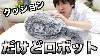 これ1万円超えるロボットなんだぜ?