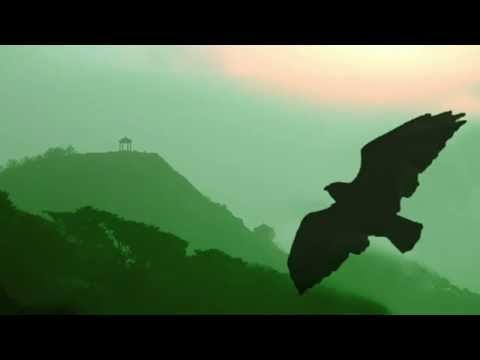 Pan Flute - One Moment in Time // Instrumental Worldhits