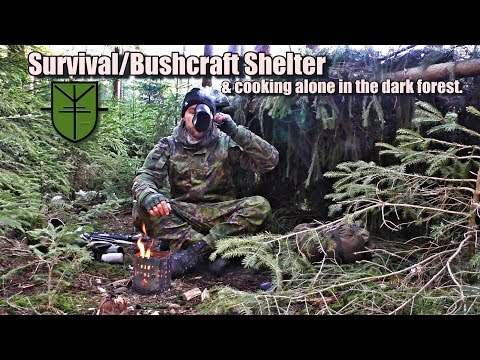 Survival / Bushcraft Shelter & cooking alone in the dark forest.