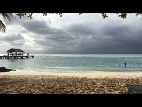 Trinidad & Tobago travel picture