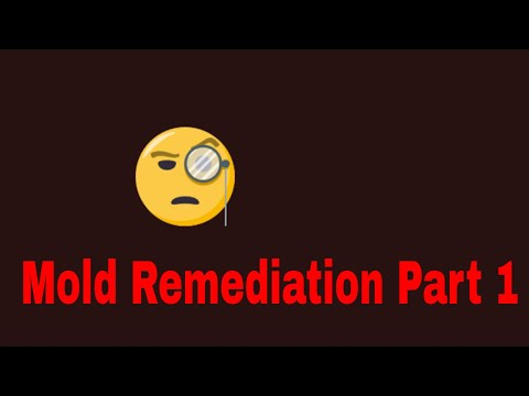 Inspection Plus - Mold Remediation Part 1