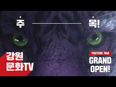 강원문화TV 오픈 Teaser 선공개