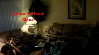 Video Chase and Antonio Show: Home Alone [UNRATED] download MP3, 3GP, MP4, WEBM, AVI, FLV September 2018
