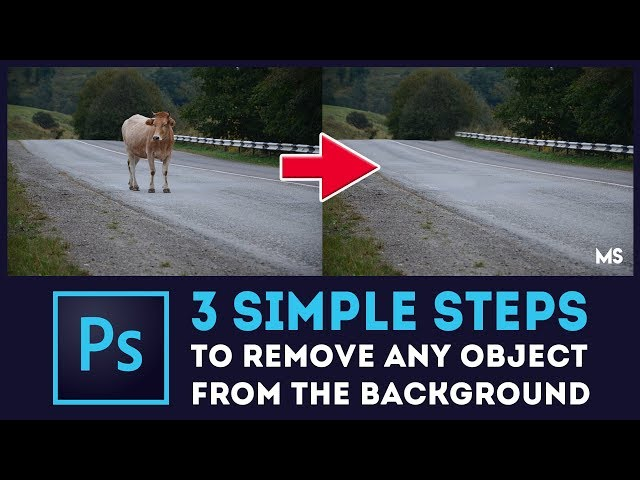 3 Steps To Remove Any Object From Background