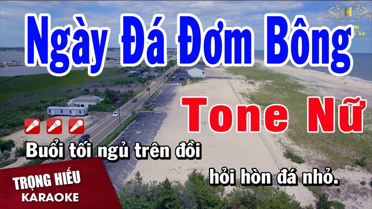 Karaoke Ngày Đá Đơm Bông Tone Nữ Nhạc Sống   Trọng Hiếu