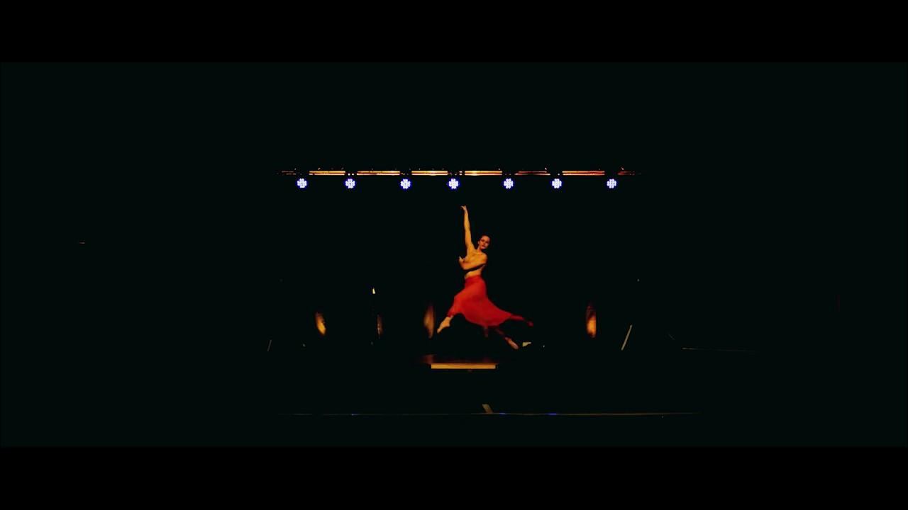 P A S S I O N   A C T  -  pole dance performance par Laetitia Baccara.