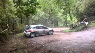 Rally 2 Valli 2015 - Andreucci crash