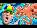 Toysee finds an OCTOPUS! Learn Sea Animals and Wild Animal while playing toys in Blue Water Tub