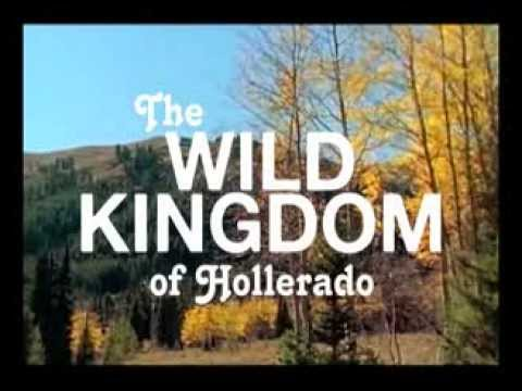 HOLLERADO: CANADA DAY 2015 @ CHINGUACOUSY PARK