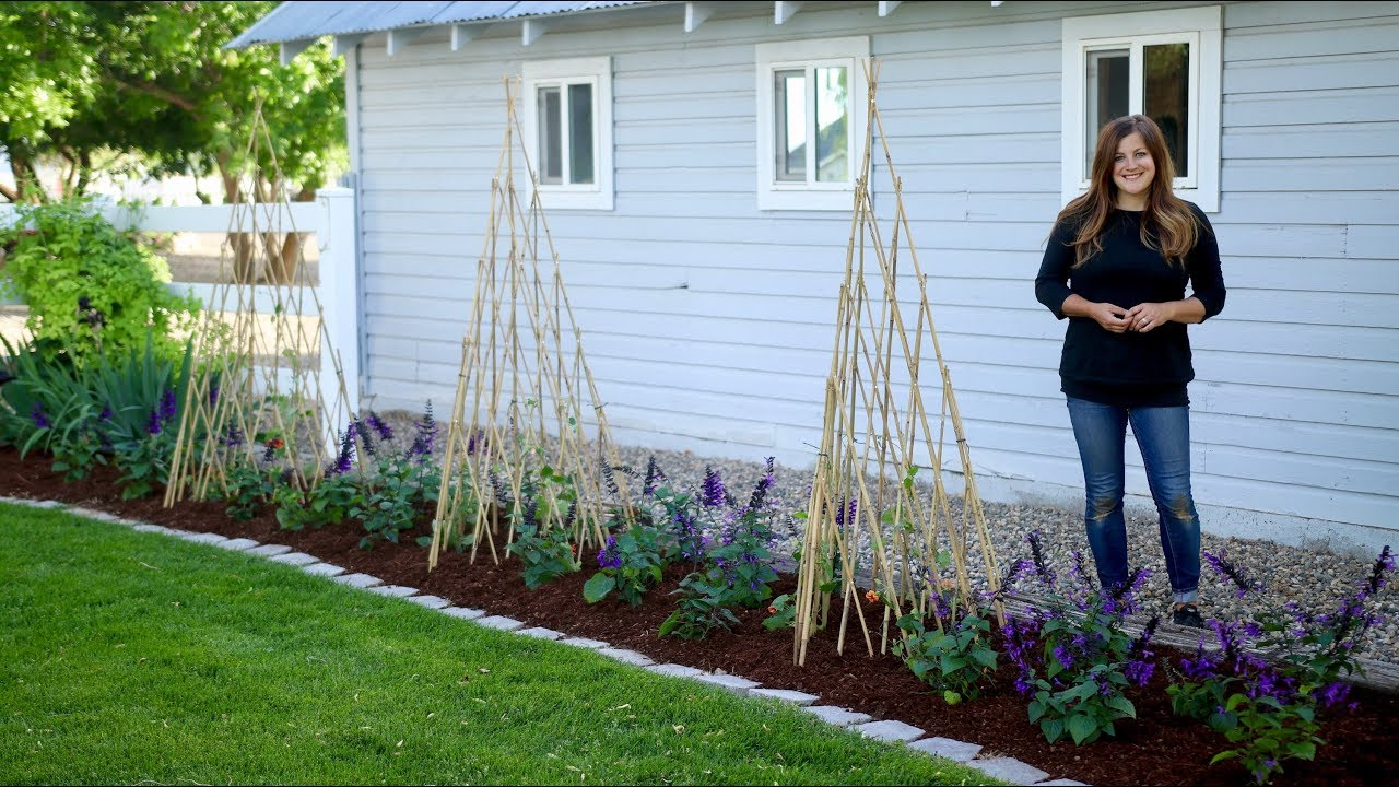 Growing Vines Up Teepee Trellises 🌿 // Garden Answer