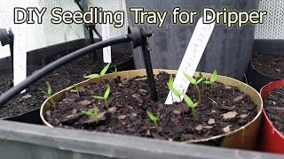 How to Make a DIY Seedling Tray for a Dripper System