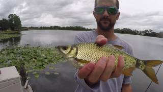 Easy Bass Fishing with Live Bait
