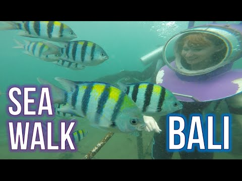Walking with fish! ★ Jun and I underwater in Bali