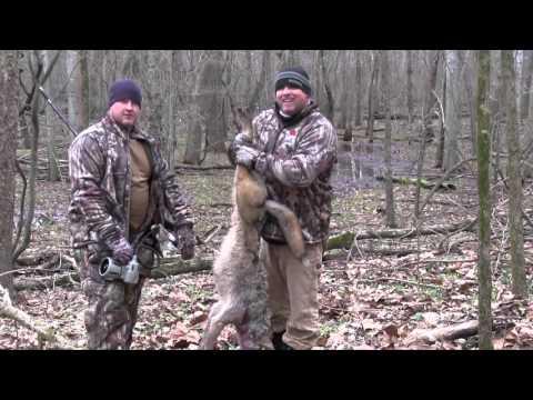 Best of MFK Coyote Hunting