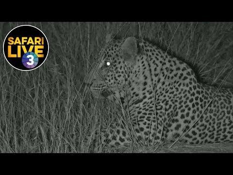 safariLIVE on SABC 3 S2 - Episode 10