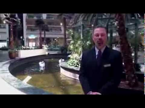 Embassy Suites Las Vegas 4315 Swenson Street  Welcome Hotel Video