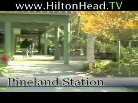 Hilton Head shopping and restaurant guide