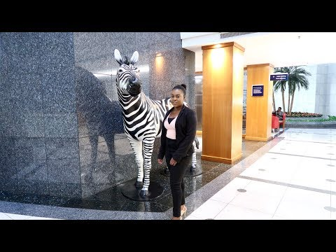 My week at Investec  Weekly Vlog  Christine Gama  South African r