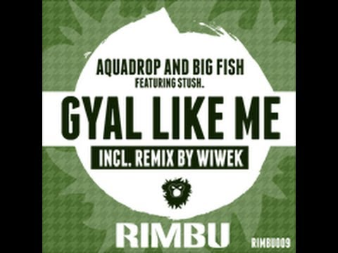Aquadrop and Big Fish - Gyal Like Me Feat. Stush (Original Mix)