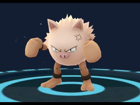 Pokemon GO - Mankey evolving into Primeape - YouTube