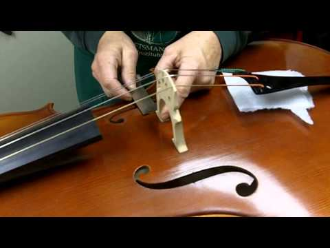 How to Set Up a Bridge on a Cello