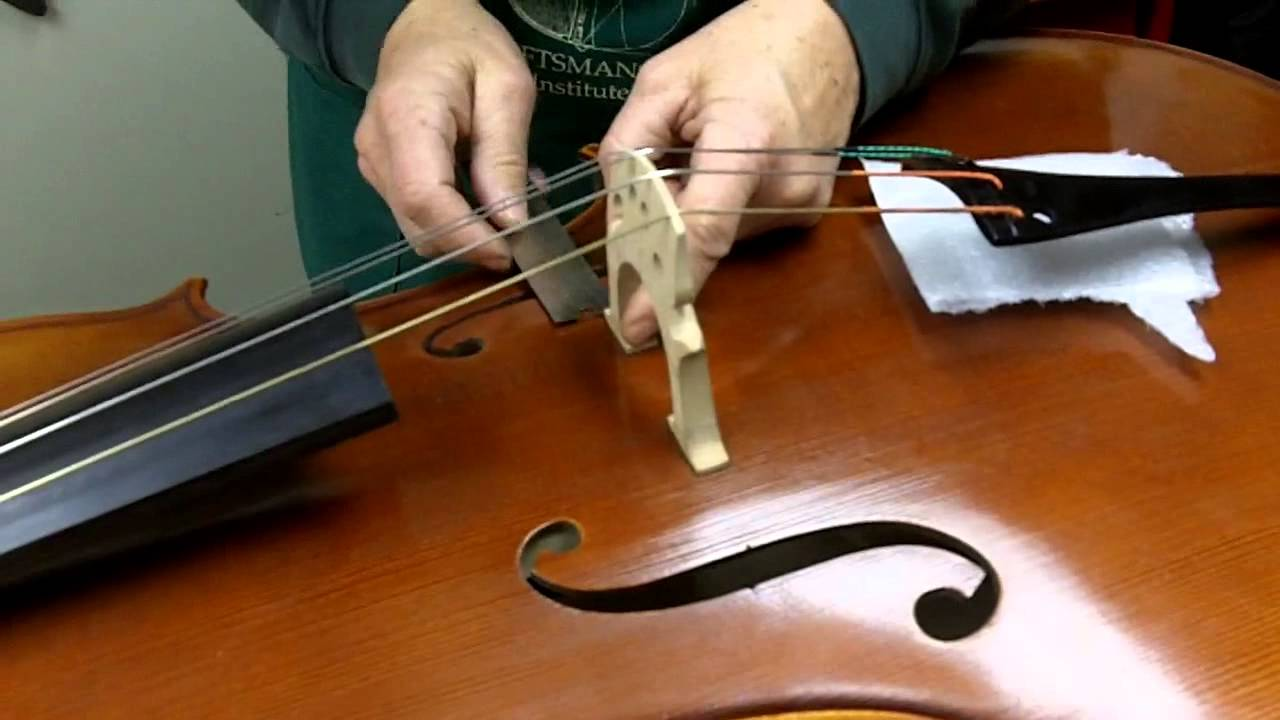 Cello Neck Repair Cost