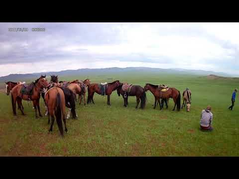 TRAVEL MONGOLIA