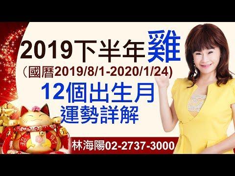林海陽 2019【生肖雞】下半年運勢詳解 20190617