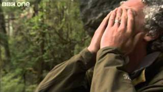 Gordon Gets Emotional After Incredible Discovery - Lost Land Of The Tiger, Episode 3 - BBC One