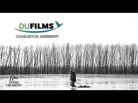 DU Films 2018: Charleston, Mississippi