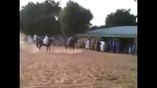 HORSE RACING: EID EL-FITR CELEBRATION IN TIKAU, EMIR'S PALACE, 2010.