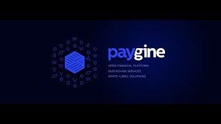 Paygine Обзор ICO - Платформа для бизнеса