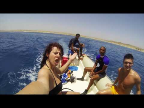 Egypt - Marsa Alam - 2016