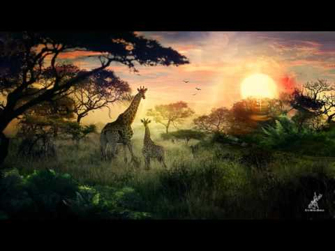 Matthew L Fisher  Inspirational Africa Epic Fantasy Uplifting Vocal