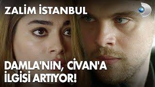 Damla'nın, Civan'a ilgisi artıyor! Zalim İstanbul 8. Bölüm